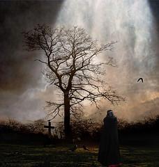 November Garden of Melancholy